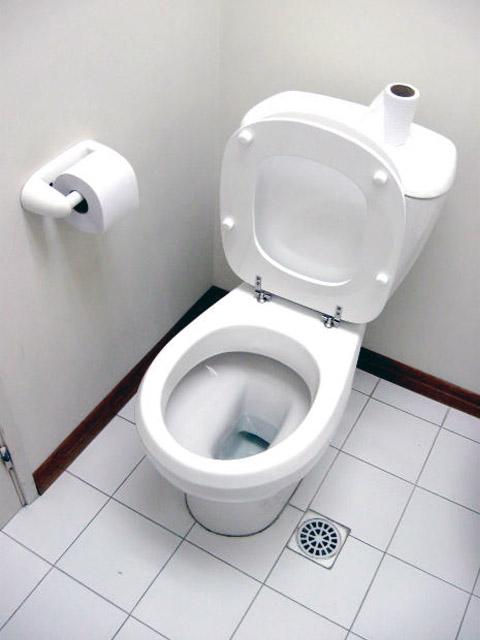 het toilet goed en milieuvriendelijk schoonmaken. Black Bedroom Furniture Sets. Home Design Ideas