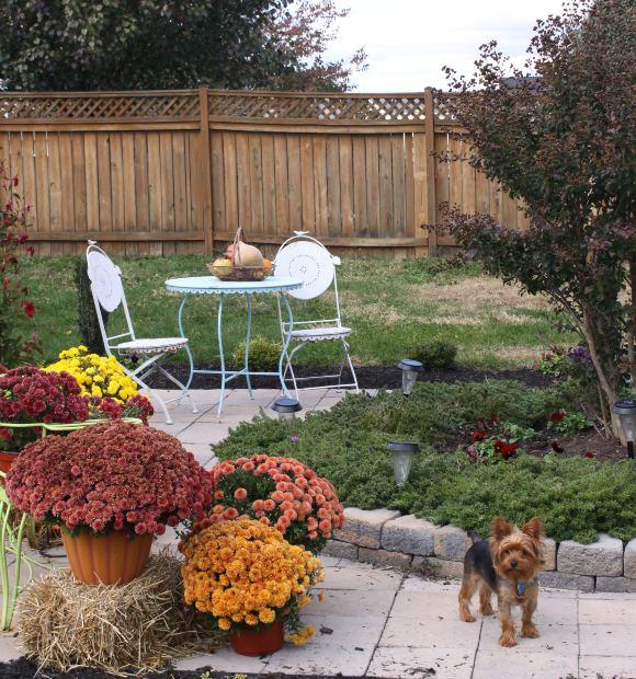 Iets Nieuws De beste tips voor het indelen van de tuin @NS83